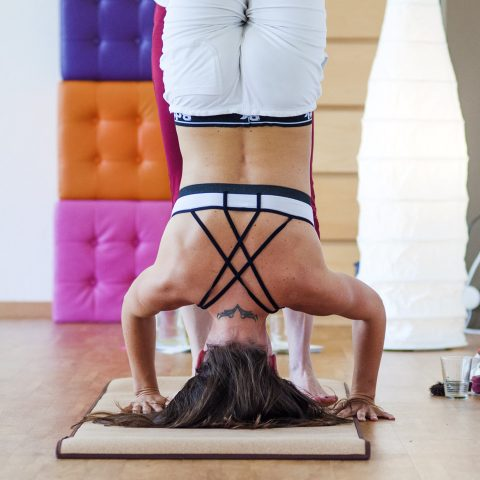 Warum Yoga?