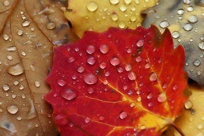 Meine Tipps für den Herbst